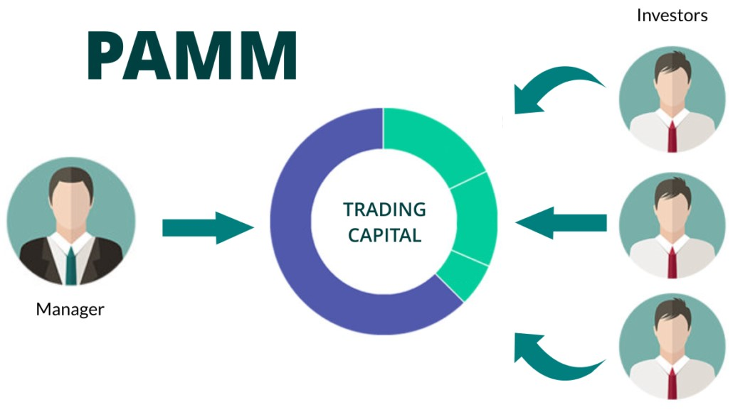 Pamm account cryptomakers